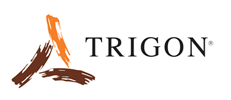 Trigon International Inc.